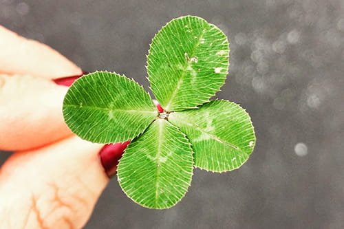 4 fun ways to celebrate st patricks day